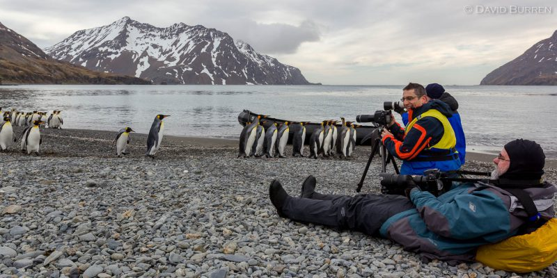 Participants in our 2010 Antarctic LuminOdyssey lying down on the job